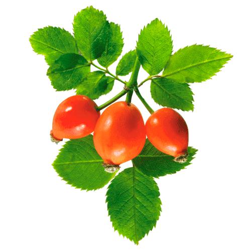 Куриное филе с помидорами и сыром фото рецепт пошаговый