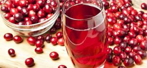 vino-iz-brusniki-3