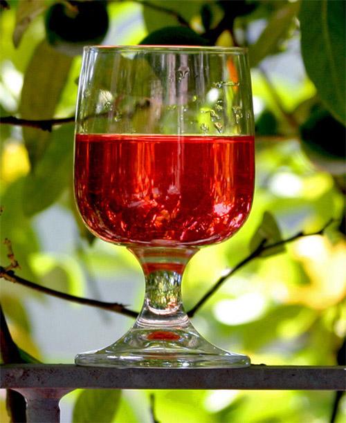 Вино из морошки в домашних условиях простой рецепт 764