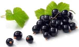 Вино в домашних условиях из винограда рецепт