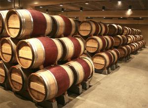 vino-gorchit-5