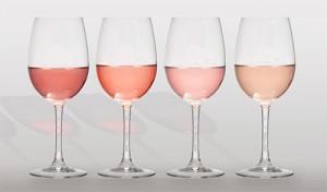vino-iz-chaynoy-rozyi-5
