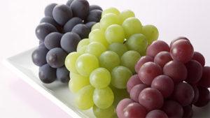 vinograda-na-litr-vina-7