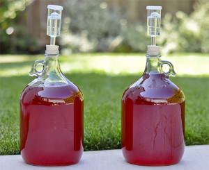 vino-iz-klubniki-2