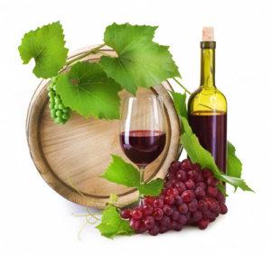 vino-gorchit-3