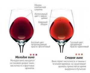 molodoe-vino