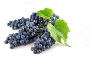 vinograda-na-litr-vina-2