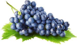 vino-iz-sinego-vinograda
